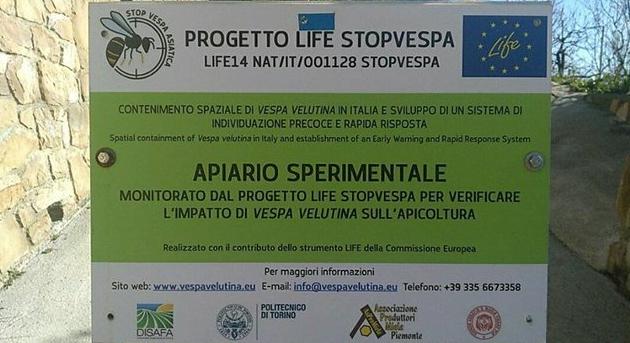 life-stop-vespa