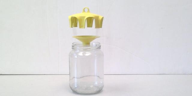 vaso-trap-comment-est-il-fait
